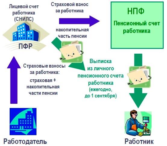Узнать пенсионные накопления по СНИЛС