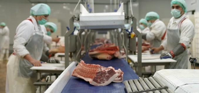 Правила санитарии для предприятий мясной промышленности